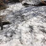 銀冷水広場にはまだ雪