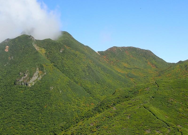 新道から山頂方面